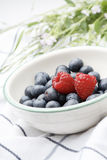 Fresh blueberries and raspberries in a bowl. Royalty Free Stock Photography