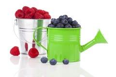 Fresh Blueberries, raspberries Royalty Free Stock Photos