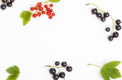 Fresh blueberries, red and black currants, gooseberries, summer berry ornament on a white background stock images