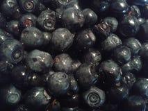 Fresh blueberries Royalty Free Stock Photo
