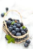 Fresh blueberries. Royalty Free Stock Image