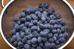 Fresh blueberries in stainless steel colander. On a wood surface Royalty Free Stock Images