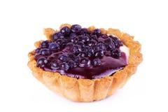 Fresh blueberries tart on a white background. Fresh blueberries tart, on a white background Royalty Free Stock Photography