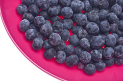 Fresh Blueberries in a Vibrant Pink Bowl. Isolated on White with a Clipping Path Royalty Free Stock Photo
