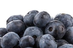Blueberries isolated close up Royalty Free Stock Image