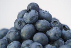 Fresh blueberries on white background Royalty Free Stock Photo