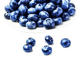 Fresh Blueberries on white plate isolated Royalty Free Stock Image