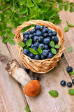 Fresh blueberries in wicker basket Stock Photography