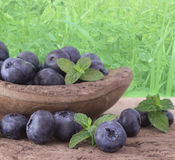 Fresh blueberries. In the wooden dish on the table Stock Photography