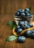 Fresh blueberries in a wooden scoop Stock Photos