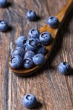 Fresh blueberries on wooden spoon. Macro shot of blueberry fruit Royalty Free Stock Photography