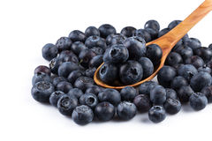 Fresh blueberries in wooden spoon Stock Images