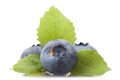 Fresh Blueberry Stock Photo