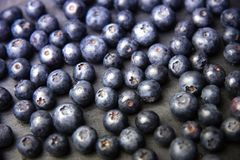 Fresh blueberry background. Texture blueberry berries close up Royalty Free Stock Photos