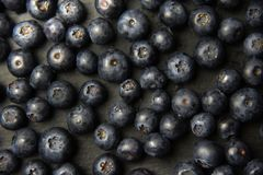 Fresh blueberry background. Texture blueberry berries close up Stock Image
