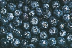 Fresh blueberry background. Texture blueberry berries top view. Fresh blueberry texture, wallpaper and background. Flat-lay of dark berries, top view. Summer Royalty Free Stock Photos