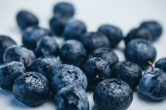 Fresh blueberry berries on a white plate close-up. breakfast of wild berries. copy space stock image