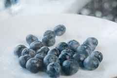 Fresh blueberry berries on a white plate close-up. breakfast of wild berries. copy space stock images
