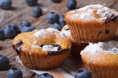 Fresh blueberry cupcakes closeup on a wooden horizontal Stock Photography