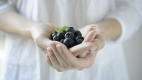 Fresh blueberry fruit stock footage
