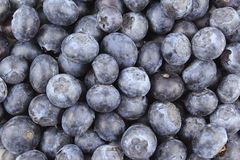 Fresh blueberry fruits closeup food background texture Royalty Free Stock Photos