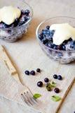 Fresh blueberry fruits Stock Photography