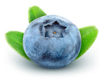 Fresh blueberry with green leaves Stock Photo