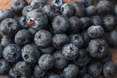 Fresh blueberry. Healhty organic food Stock Photography