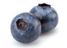 Fresh Blueberry Stock Image