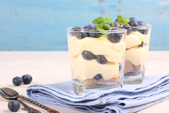 Fresh blueberry layered desert with mascarpone cream and cookies. In glass royalty free stock photography