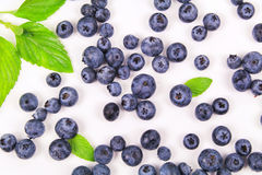 Fresh blueberry with leaf. On white background royalty free stock photo