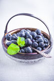 Fresh Blueberry and mint. On a wooden table Royalty Free Stock Photo