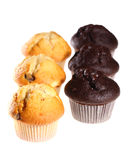 Fresh blueberry muffins Royalty Free Stock Photos