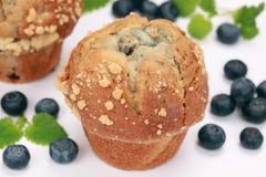 Fresh blueberry muffins Royalty Free Stock Photo