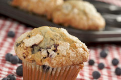 Fresh Blueberry Muffins. Out of the oven - red & white checkered gingham Royalty Free Stock Images