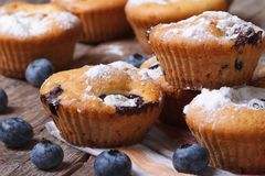 Fresh blueberry muffins close-up on the table. horizontal Royalty Free Stock Image