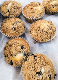 Fresh Blueberry Muffins Stock Photo