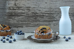 Fresh Blueberry Muffins on Rustic Burlap Royalty Free Stock Photography