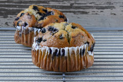 Fresh Blueberry Muffins on Rustic Burlap Stock Images