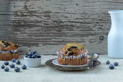 Fresh Blueberry Muffins on Rustic Burlap Royalty Free Stock Photo