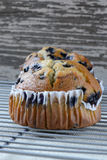 Fresh Blueberry Muffins on Rustic Burlap Stock Image