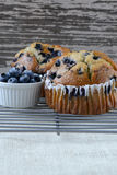 Fresh Blueberry Muffins on Rustic Burlap Stock Photography