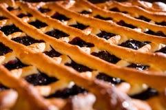 Fresh blueberry pie Stock Image