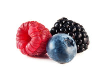 Fresh blueberry, raspberry and blackberry isolated. On white background Royalty Free Stock Photography