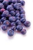 Fresh blueberry  summer fruit Stock Photos