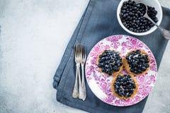 Fresh blueberry tart on vibrant plate Royalty Free Stock Photography