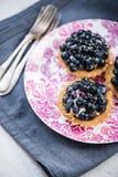 Fresh blueberry tart on vibrant plate Stock Photos