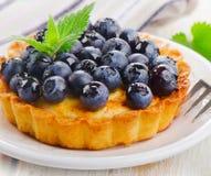 Fresh Blueberry tart Stock Photos