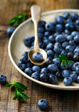 Fresh blueberry in to the basket Royalty Free Stock Image