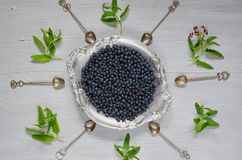 Fresh blueberry on the vintage silver plate ready to eat on the gray kitchen background with copy space. Healthy food concept. Top view Stock Photography